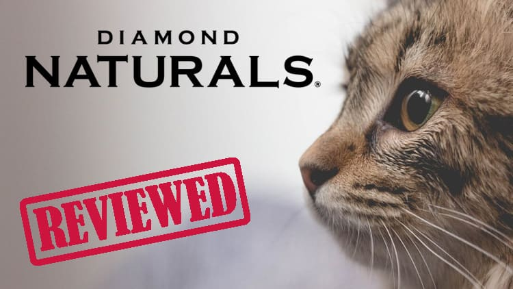 Diamond Naturals cat food review