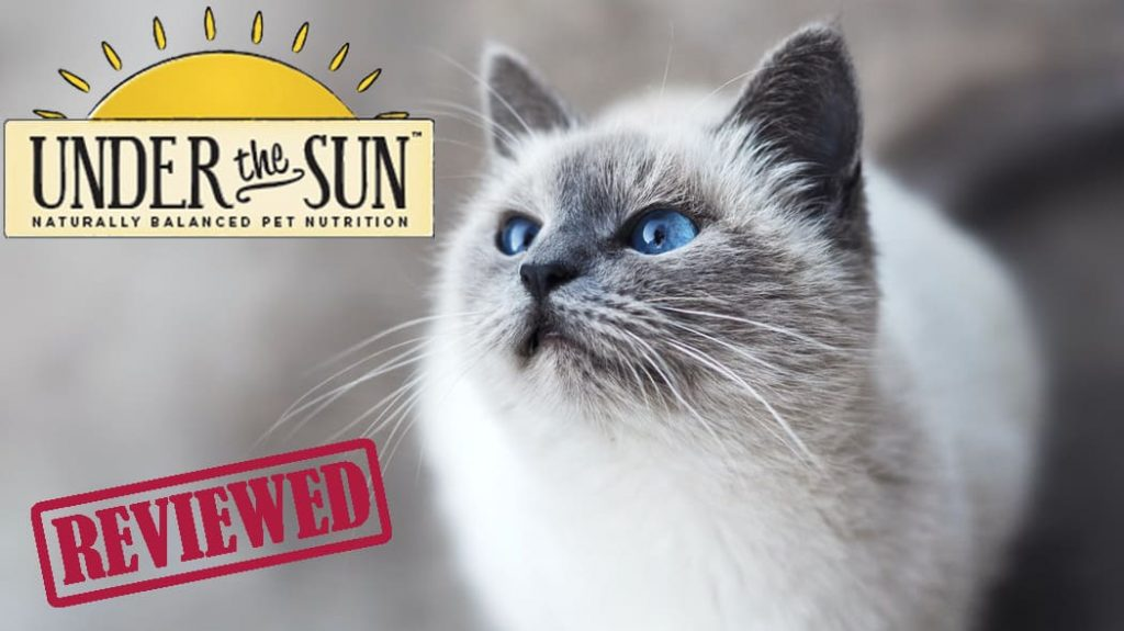 Under the sun cat food review