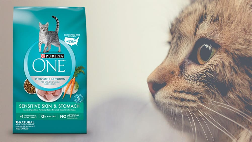 purina one sensitive systems cat food review